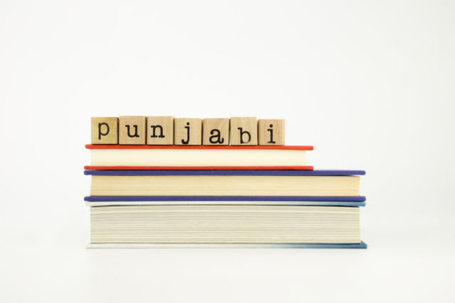 Punjabi Community Book Selection