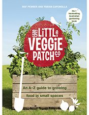 the little veggie patch co small spaces